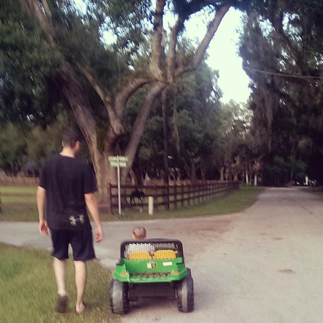Nightly Walks in Buckingham, FL